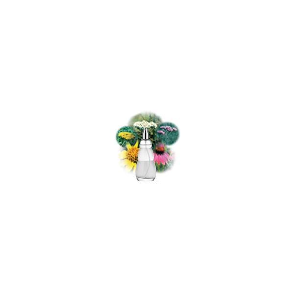 Sprayer Air-Ion & Schutzspraynachfüllflasche 200ml